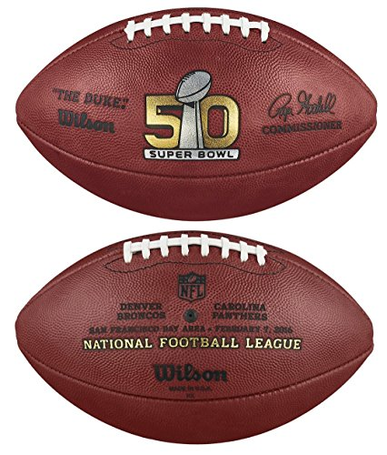 Authentic Official Football Panthers Inscribed