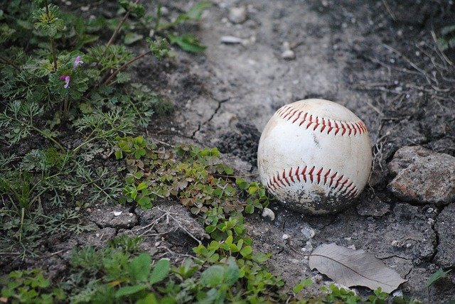 Seeking Knowledge About Baseball? You Need To Read This Article!